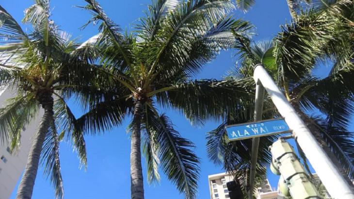 ハワイを100%満喫できる!ワイキキ穴場のウォーキングスポット