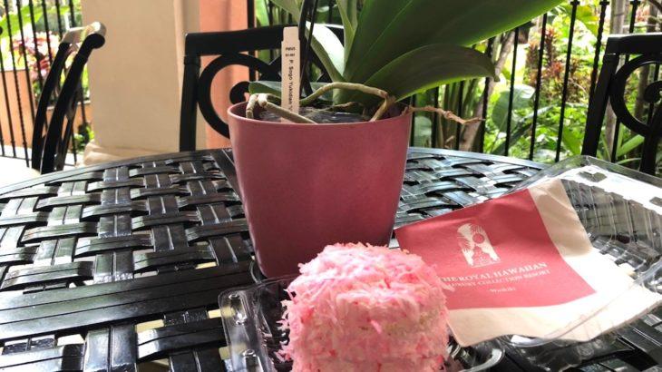 ロイヤルハワイアンで大人気の『ピンクパレス・スノーボール』【Royal Hawaiian Bakery】