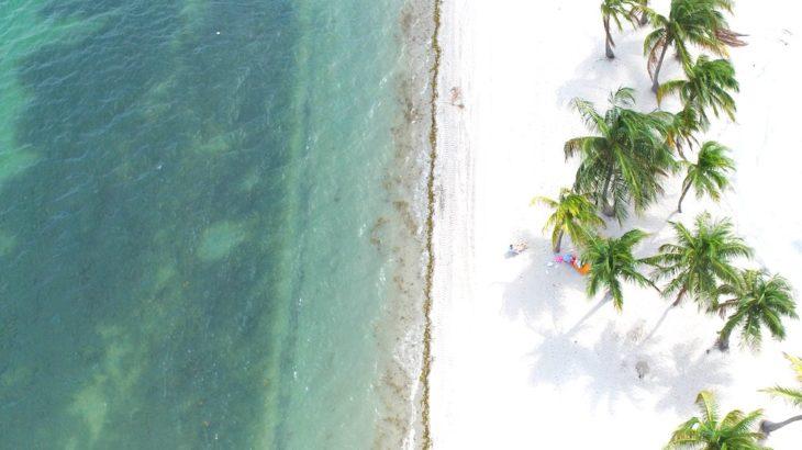 最安で行こう!オススメの6月ハワイ旅行!服装は?イベントは?