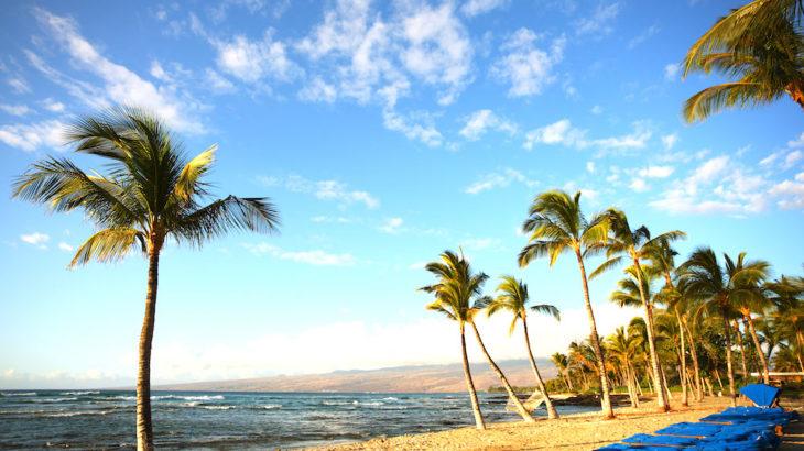 松屋銀座にハワイが来る!「Feel Hawaii In Ginza 2019」で日本にいながらハワイ気分!【随時更新】