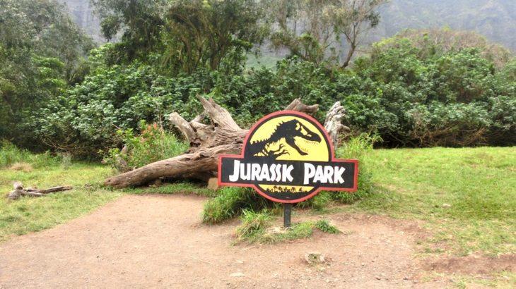 【脱ワイキキ】郊外ツアーでハワイの大自然を楽しむ!