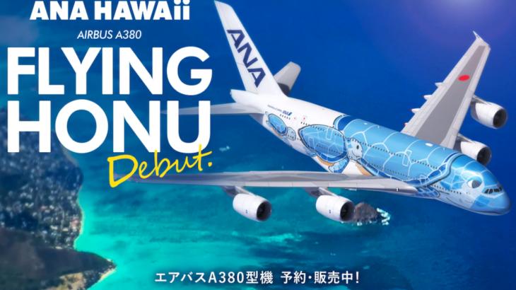 ハワイに向けて空飛ぶウミガメ!1ヶ月経っての感想は?【FLYING HONU】