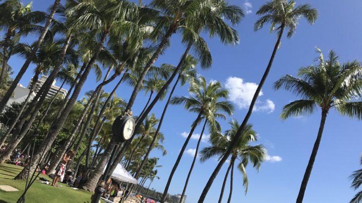 【徹底解説】ハワイの税関もこれで怖くない!空港で慌てない予備知識
