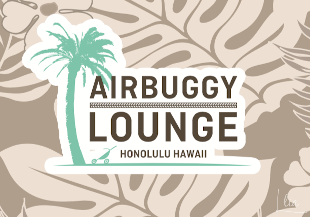 AIRBUGGY LOUNGE