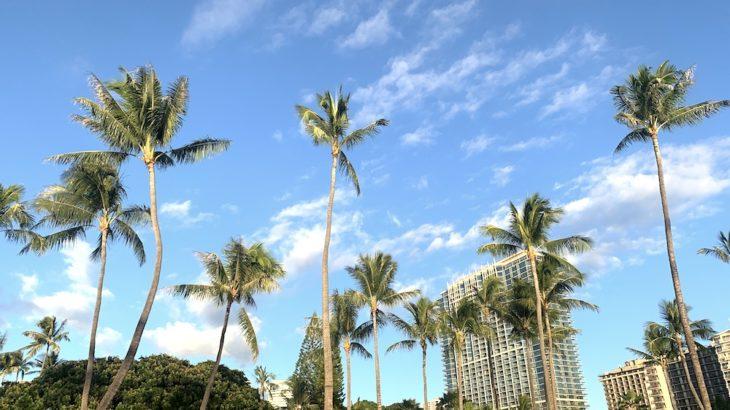 【ハワイ留学全解説】遊びも勉強!?ハワイ留学は自分を進化させる超貴重な経験