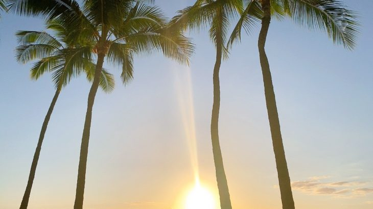 カハラビーチで17歳の少女が刺される事件が発生、コロナ禍でハワイの治安が悪化