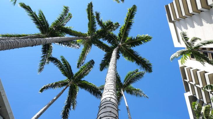 【週間ハワイニュース】14日間の自己隔離措置違反182名を逮捕